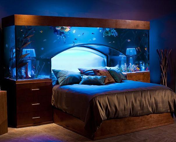 cama acuario