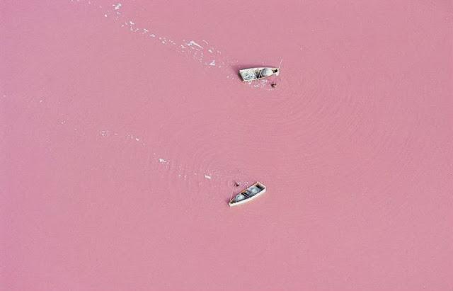 lago-rosa-3