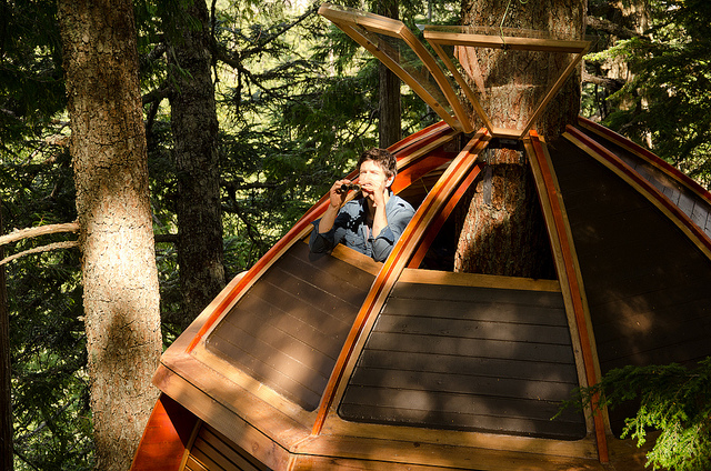 Secret-HemLoft-Treehouse-in-Canadian-Woods-6