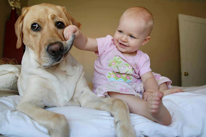 cute-big-dogs-and-babies-32