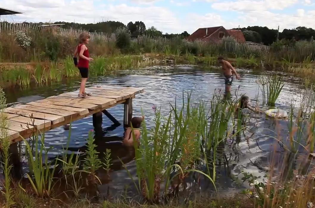 piscina-natural-2