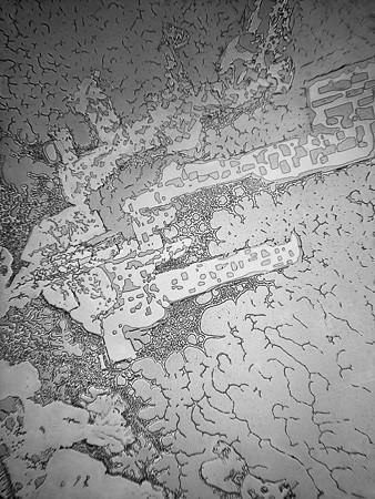 Lagrimas al microscopio 12