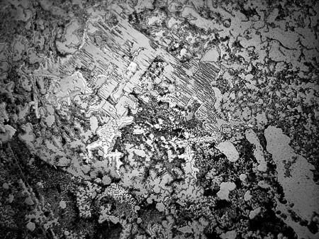 Lagrimas al microscopio7