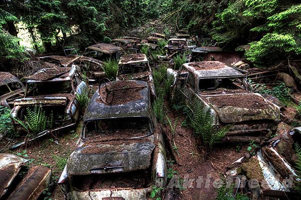 cementerio coches 4
