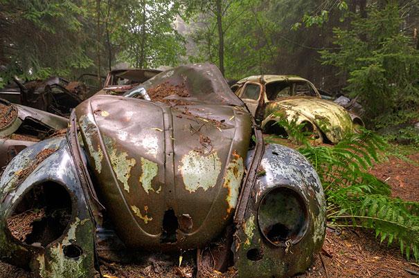cementerio coches 5