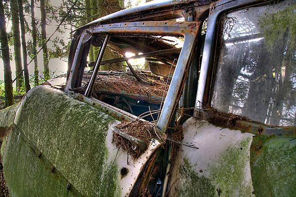 cementerio coches 7