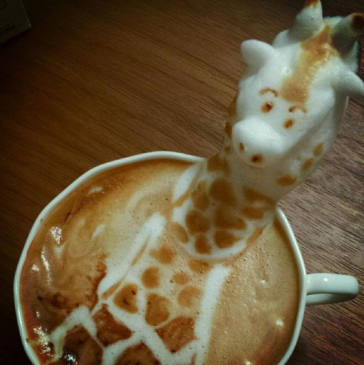 espuma café 5