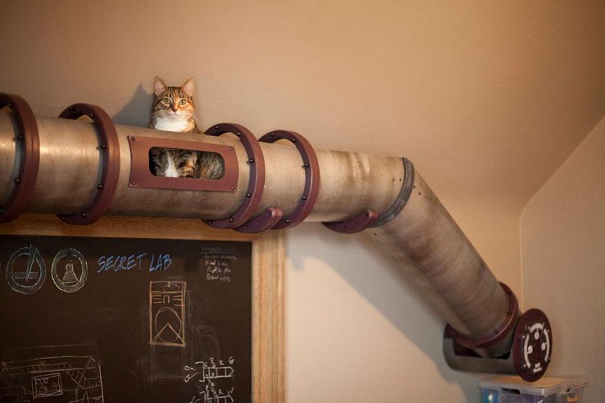 muebles gatos 10.1