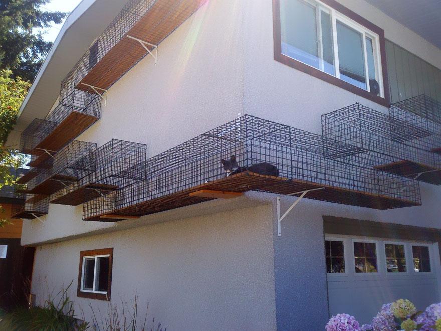 muebles gatos 24