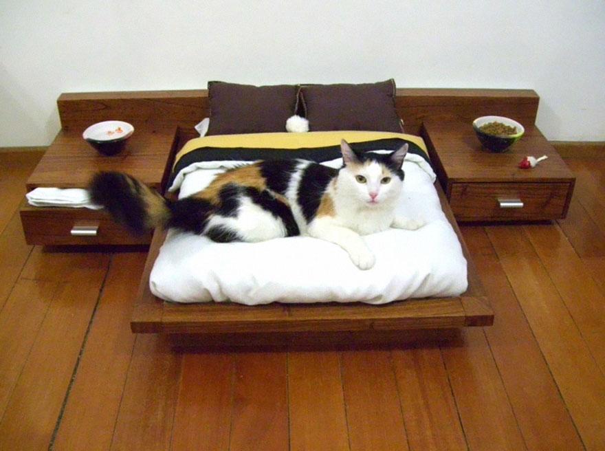 muebles gatos 3.0