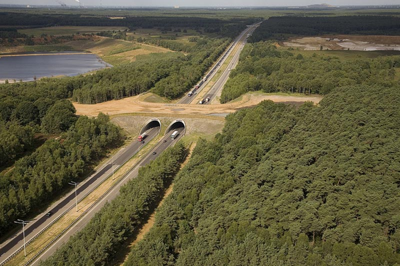 Ecoduct Kikbeek over de E314.