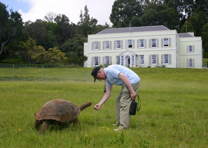 tortuga gigante 7