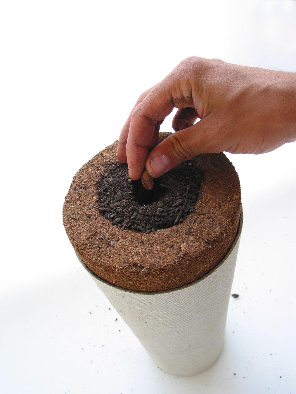 urna-bios-2