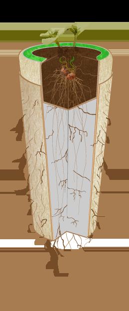 urna-bios-6