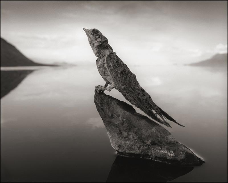 Lago alcalino 3