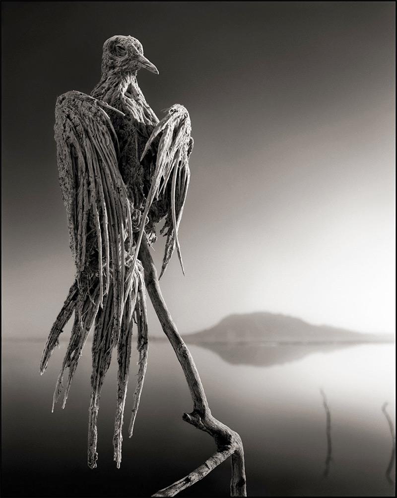 Lago alcalino 4