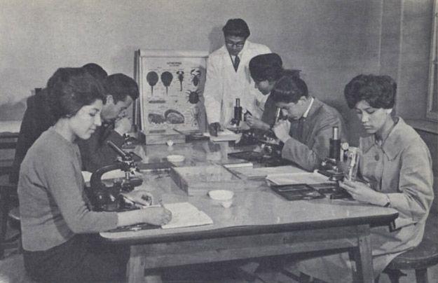 Mujeres de Afaganistan 25