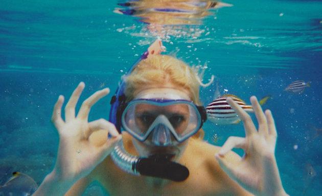 Añadiendo peces exóticos al fondo para hacer creer que estaba en el mar