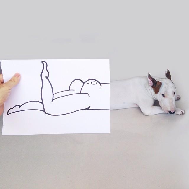 jimmy choo bull terrier ilustraciones 3