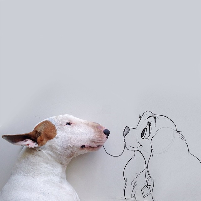 jimmy choo bull terrier ilustraciones 5