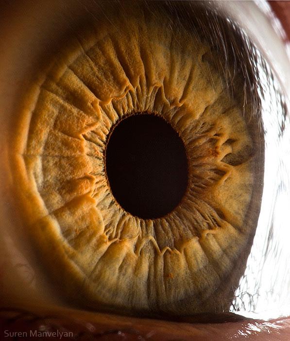 ojos-cerca-