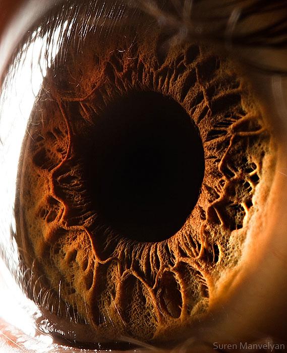 ojos-cerca-1