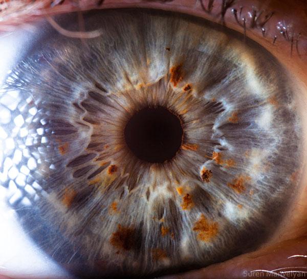 ojos-cerca-12