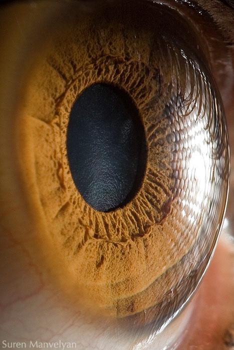 ojos-cerca-13