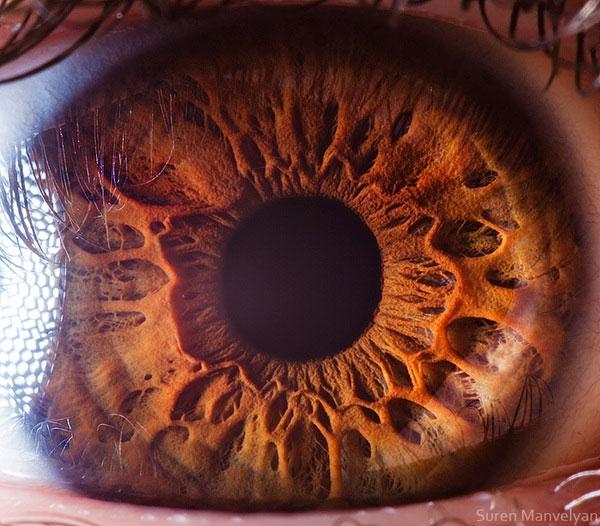 ojos-cerca-14