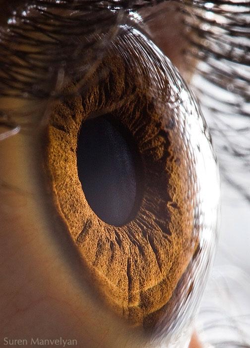 ojos-cerca-16