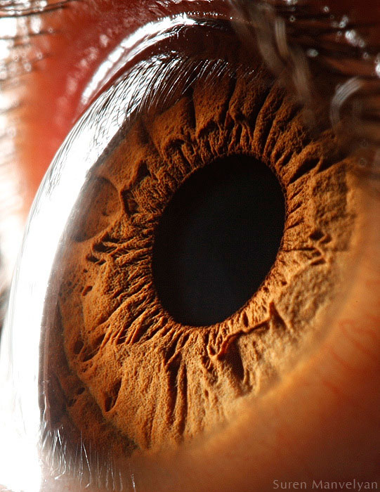 hacer un ojo humano