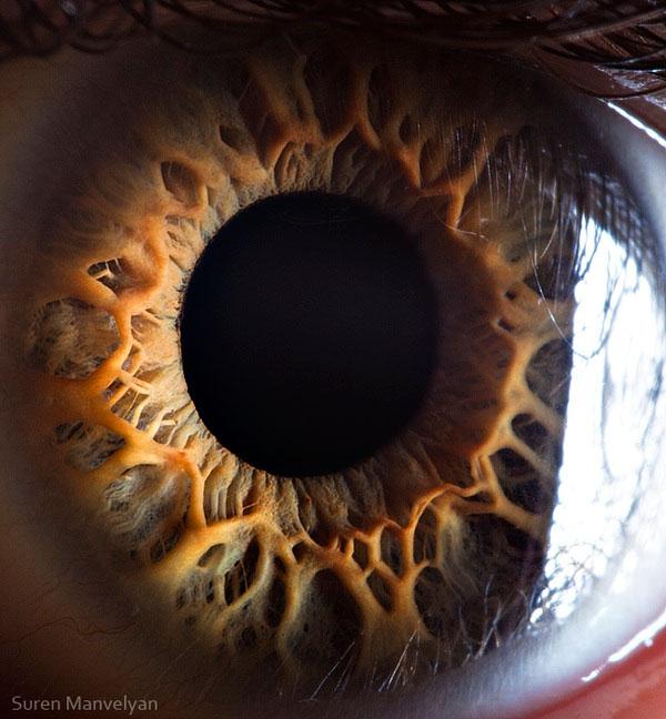 ojos-cerca-4
