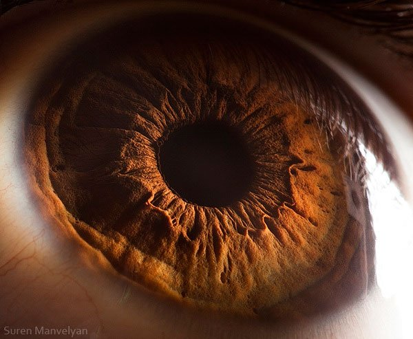25 fotografías de ojos vistos muy de cerca te dejarán ...