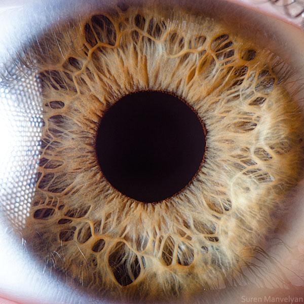 ojos-cerca-8