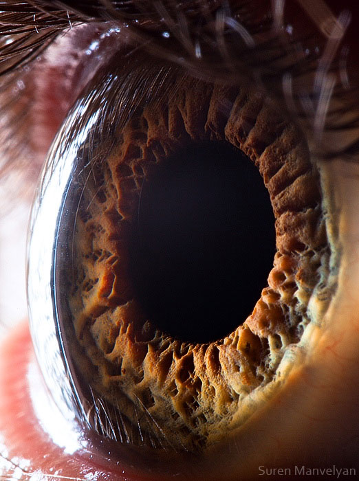 ojos-cerca-9