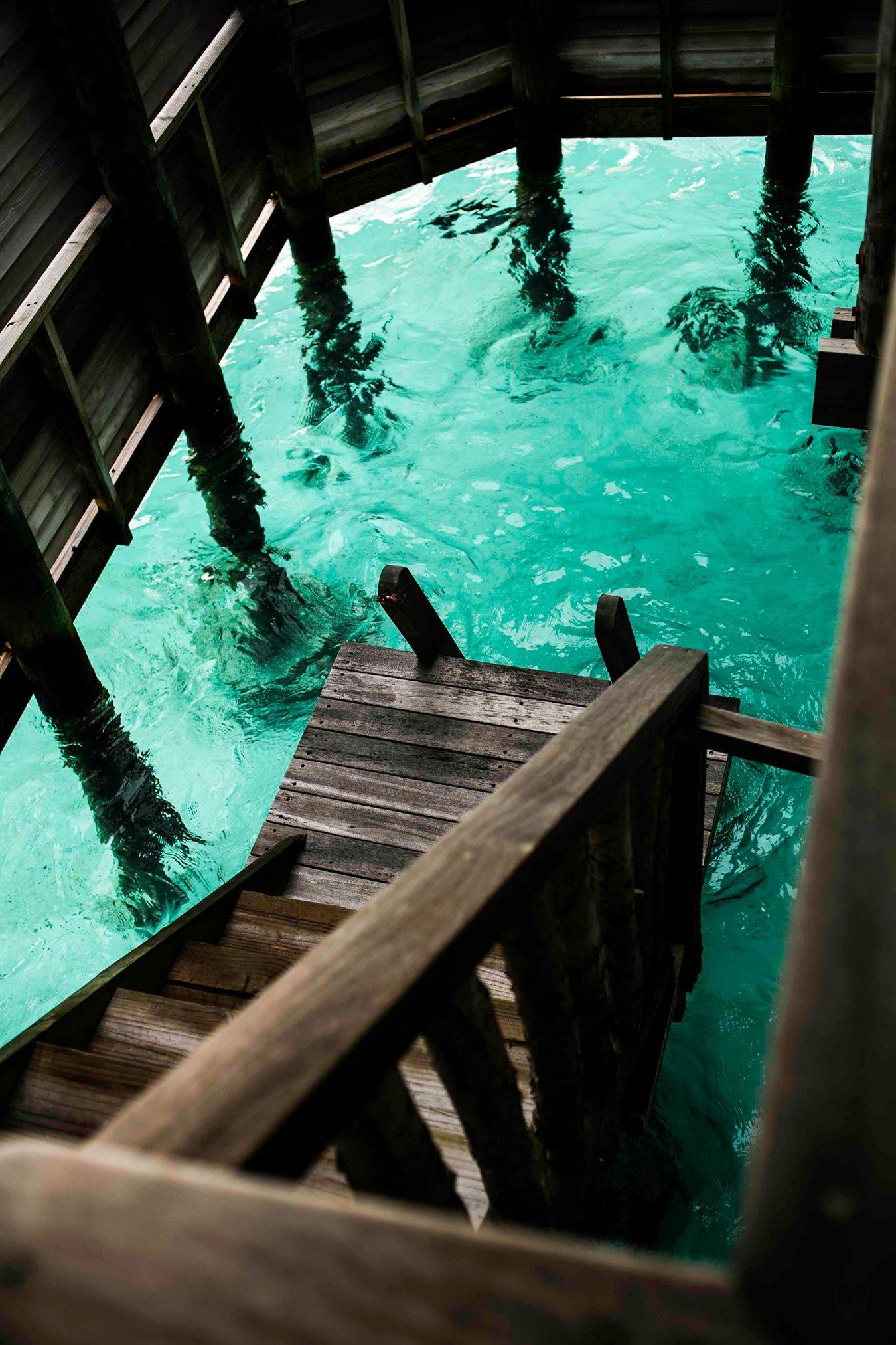 turismo en las maldivas 16