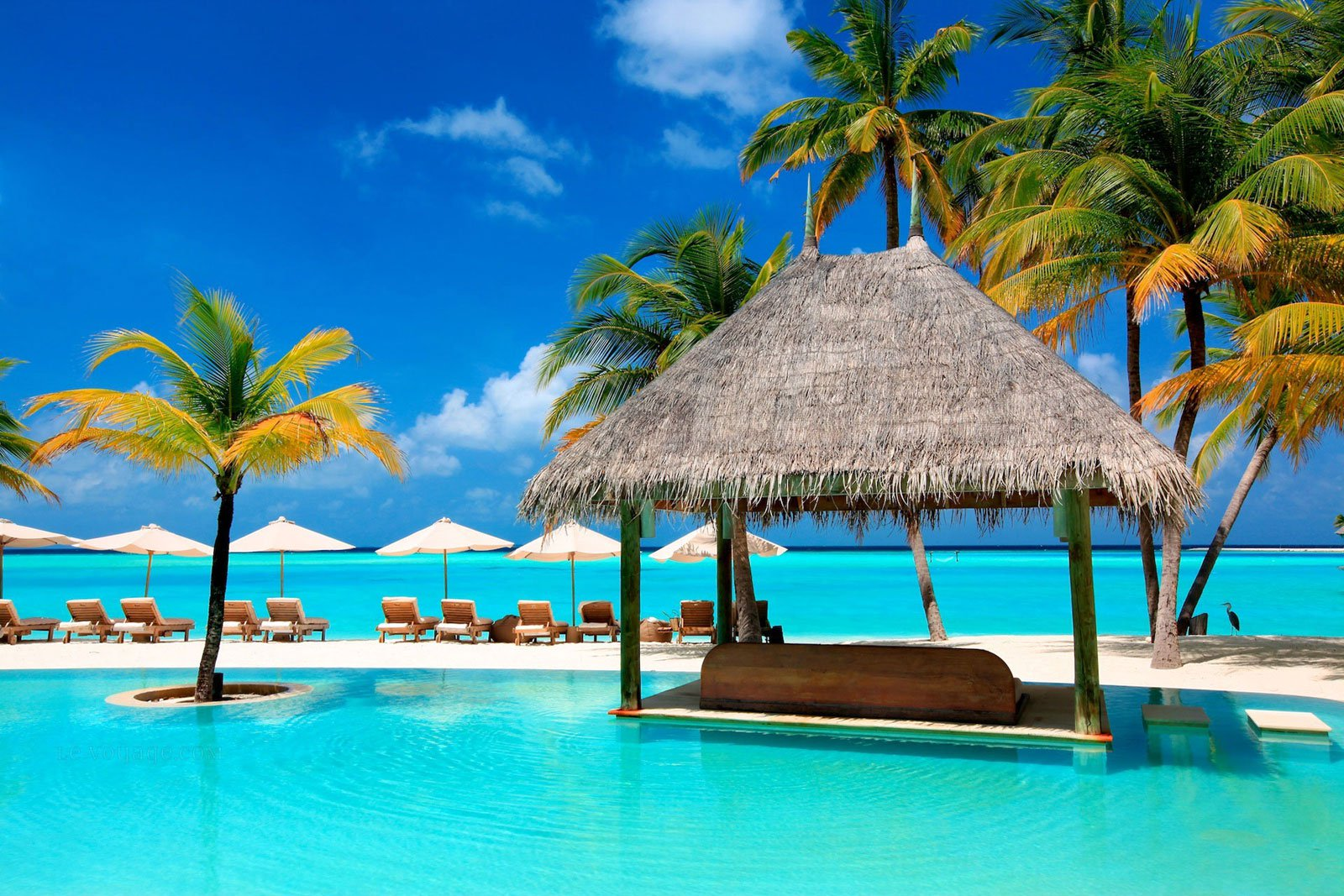 turismo en las maldivas 25