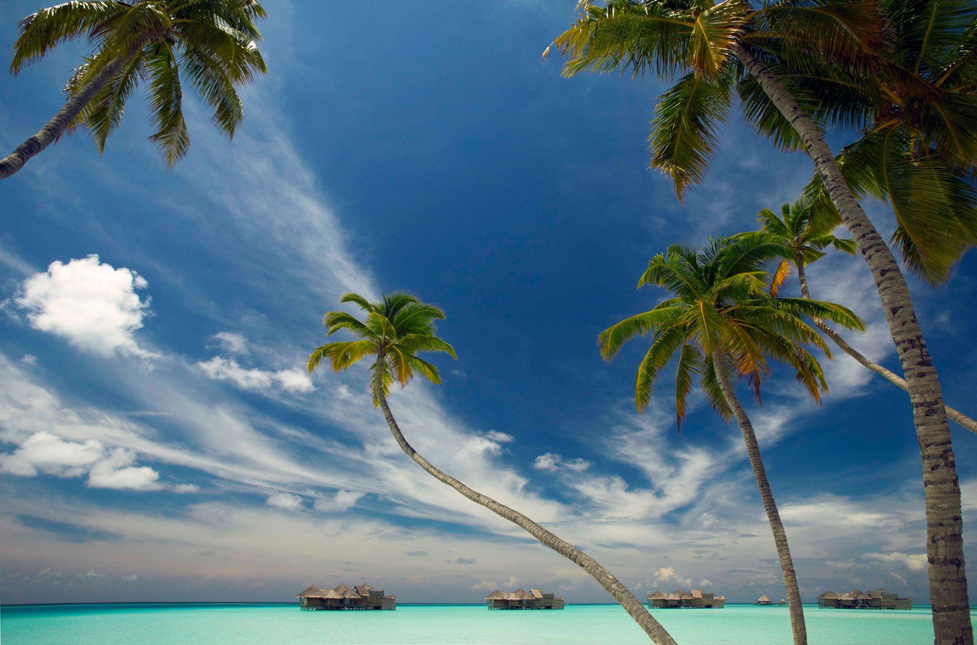 turismo en las maldivas 7