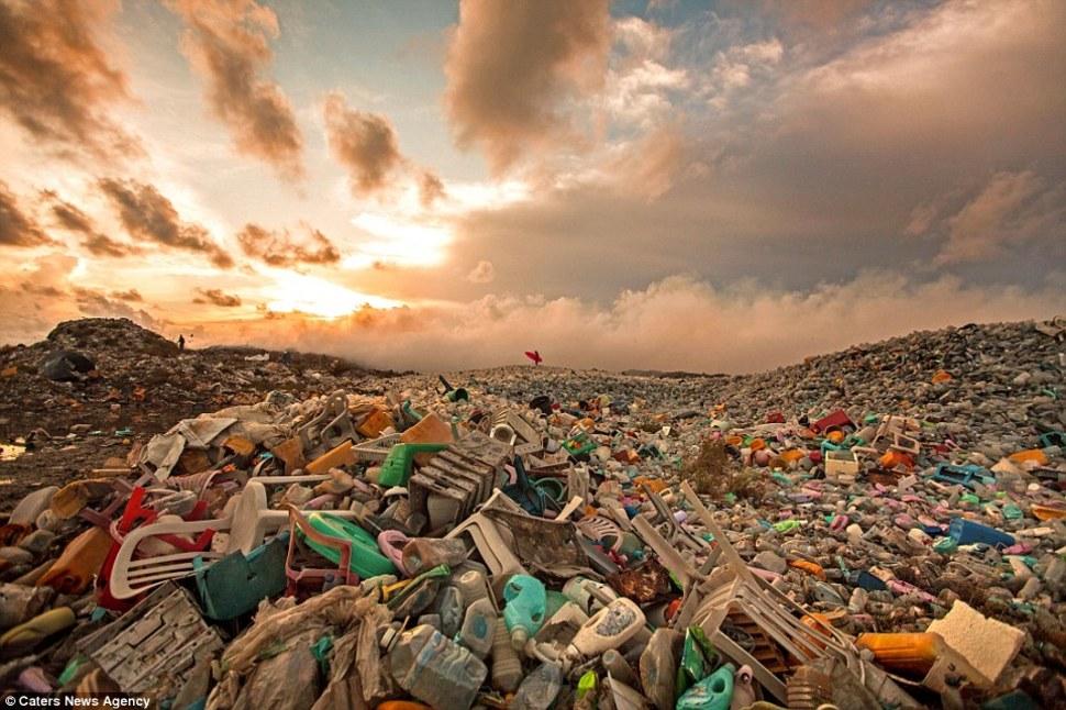 Isla de basura14