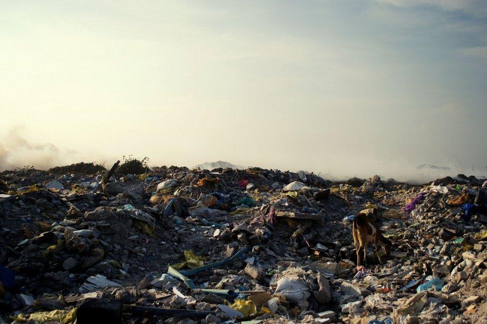 Isla de basura3