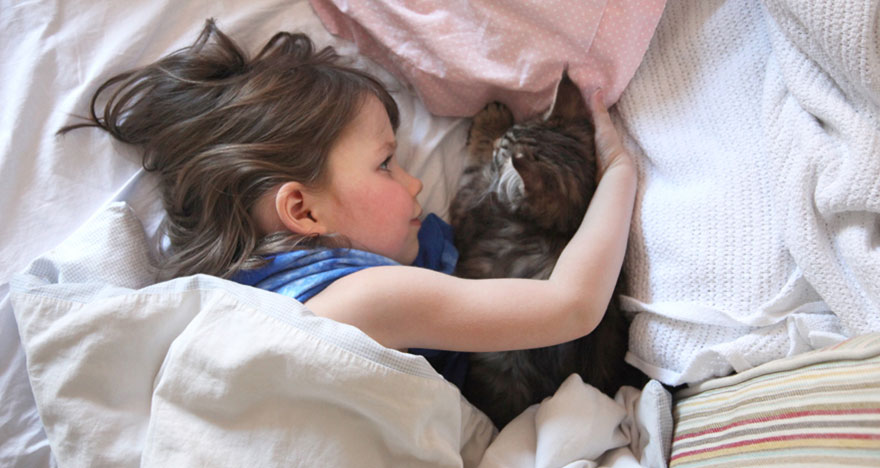 gatito niña autista 10