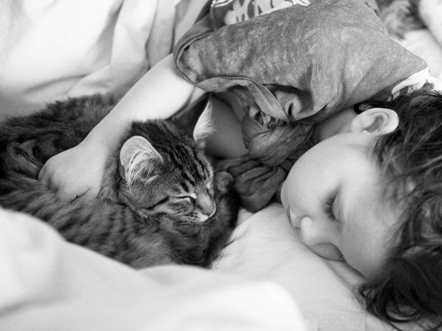 gatito niña autista 12