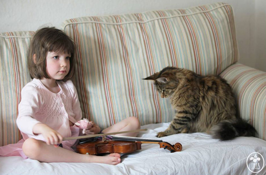 gatito niña autista 13