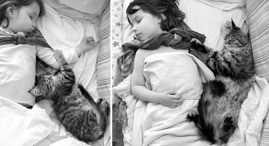 gatito niña autista 19