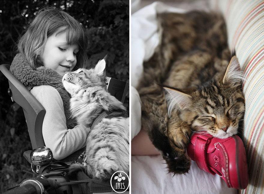 gatito niña autista 21