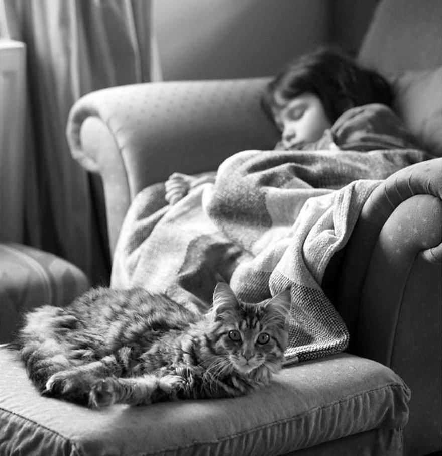 gatito niña autista 22