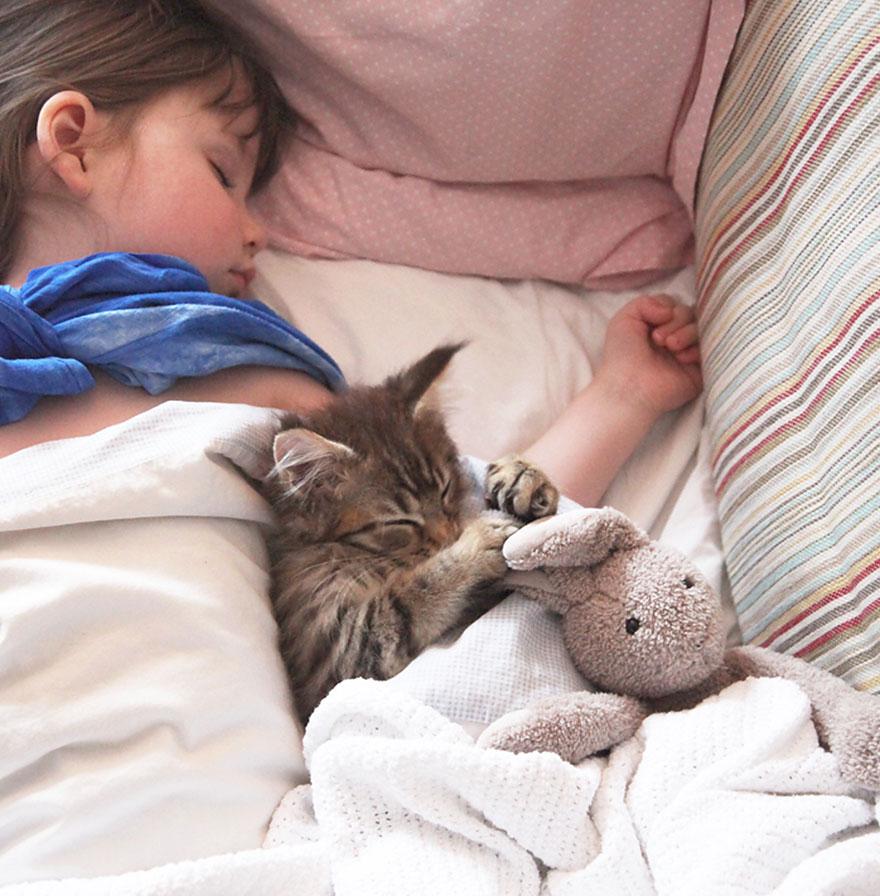 gatito niña autista 3