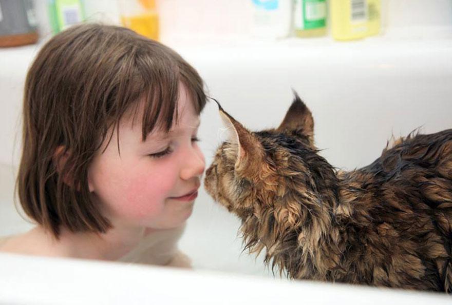 gatito niña autista 4