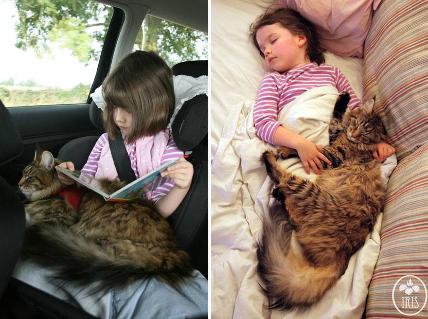 gatito niña autista 5