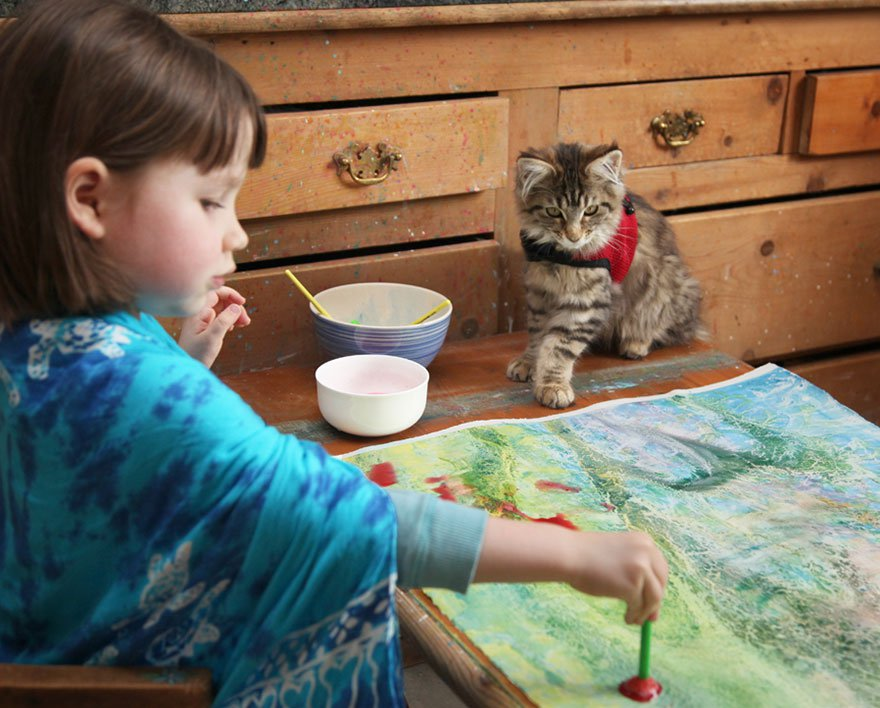 gatito niña autista 6